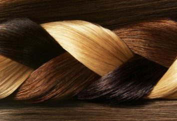 Como misturar a tintura de cabelo? nuances importantes, apresentar tons
