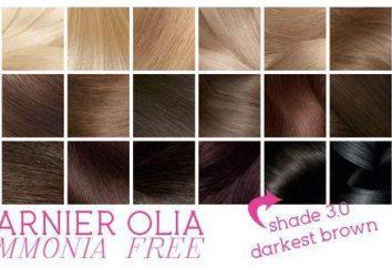 """Cor do cabelo Auliya': várias cores paleta"