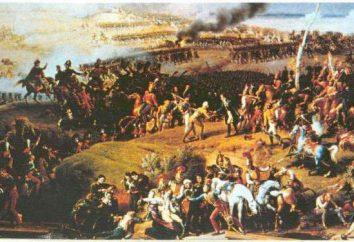 La batalla de Borodino 1812:. Brevemente sobre los principales