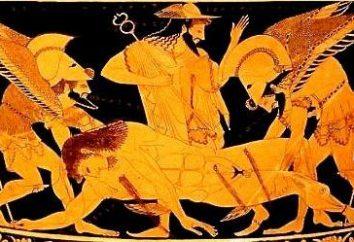 Les mythes de la Grèce antique. Synopsis par N.Kuna – livre de tous les temps