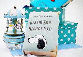 """Gabriel Troepol'skaya """"Biały Bim, Czarne Ucho"""": opinie o książce, podsumowanie głównych bohaterów"""