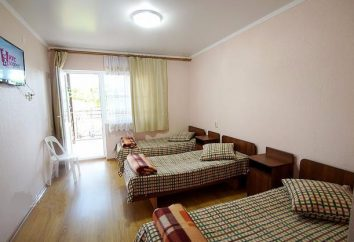 """Guest house """"Breeze"""" (Arkhipo-Osipovka): descrizione e recensioni"""