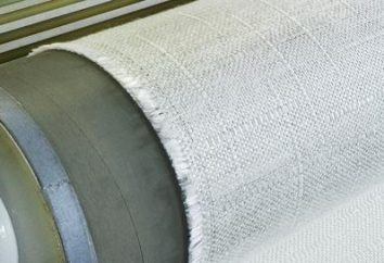 fibra de vidro – o que é? Como colar a parede de vidro? fibra de vidro de tinta