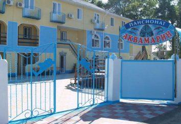 """Recreation Center """"Aquamarine"""". Relaxe na região do norte do Mar Negro (Ucrânia)"""