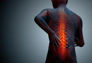 Gimnastyka przepuklina kręgosłupa lędźwiowego: Ćwiczenia