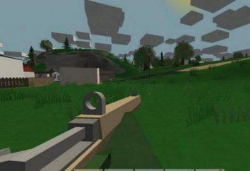 i comandi della console sia per il singolo e multiplayer gaming: Unturned