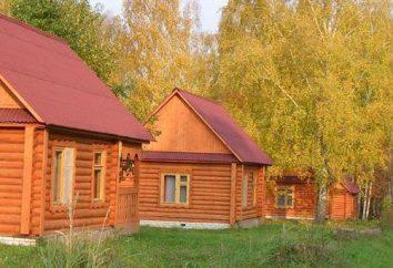 """""""Vasilsursky"""" nella regione Nizhny Novgorod: foto, recensioni"""