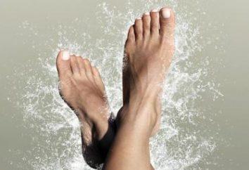 Jak zatrzymać? anatomia kość ludzka stopa