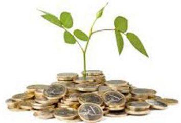 les aides d'État aux petites entreprises. Comment obtenir de l'aide de l'Etat pour les petites entreprises?
