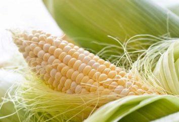 Vous voulez savoir comment faire cuire, griller et cuire le maïs?