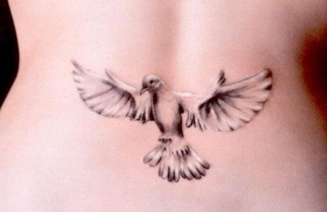 Dove Tatuaż Którego Znaczenie Jest Warte Poznania