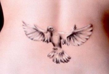 Dove – tatuaż, którego znaczenie jest warte poznania