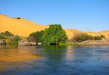 río Nilo fluye en qué dirección? Descripción río