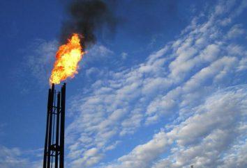 Los principales tipos de gases