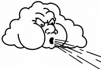 Warum blasen die Winde? Warum entsteht der Wind? Der Wert des Windes in der Natur