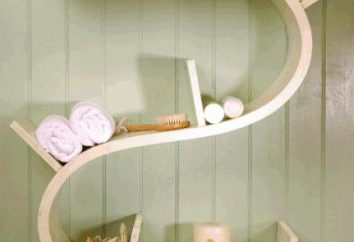 Łóżka łazienkowe: wiele opcji