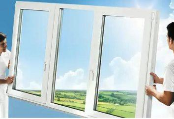Wartung von Kunststoff-Fenstern. Wartung und Reparaturen