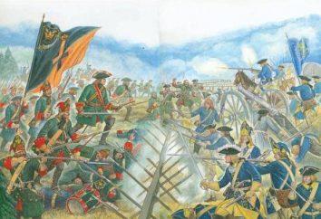 Batalha de Poltava resumiu a coisa mais importante