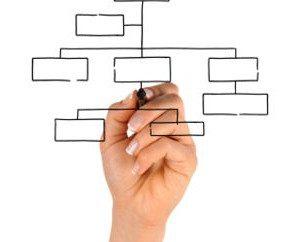 estrutura organizacional divisional da empresa