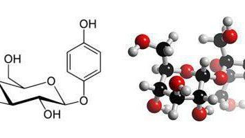 Arbutina – lo que es y lo que se utiliza? Aplicación en medicina y cosmetología