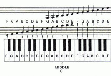 Wie eine Notiz ziehen? Noten für Klavier. sieben Noten