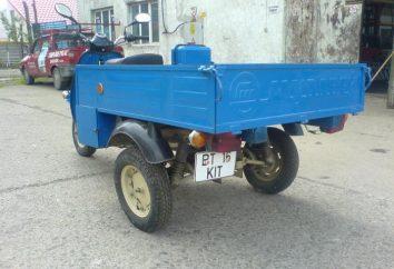"""Motocicleta """"hormiga"""" – barato y fiable"""