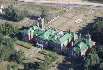 Castillo Sheremetyeva en Yurino, ruso: Descripción, historia y hechos interesantes