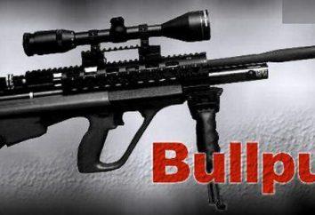 """Ataman"" – carabine à air comprimé. Avis, fabricant, caractéristiques"