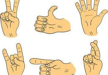 gestos de las manos y su significado: ¿cómo se sabe que la persona en su mente?