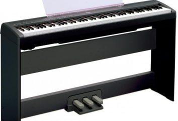 Digital Piano: Beschreibung, Übersicht, Spezifikationen, Hersteller, Bewertungen
