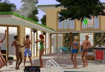 """il codice dello sviluppatore """"The Sims 3"""" (The Sims 3)"""