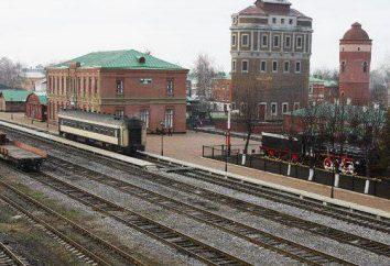 Städte und Gemeinden verbunden mit dem Namen des berühmten russischen Schriftstellers. Das Dorf Lva Tolstogo (Kursk, Samara, Region Tula). Das Dorf Lev Tolstoi (Gebiet Lipezk)