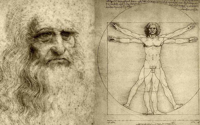Beitrag zur Entwicklung der Anatomie Leonardo da Vinci. Anatomie in ...