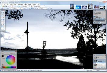 Come fare uno sfondo trasparente nel dipingere? Come rimuovere o modificare lo sfondo in Paint?