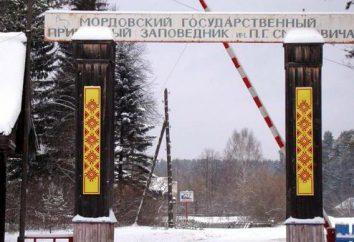 Dove si riserva di Mordovia? Mordovia Stato riserva naturale di loro. P. G. Smidovicha: la storia, la descrizione, foto