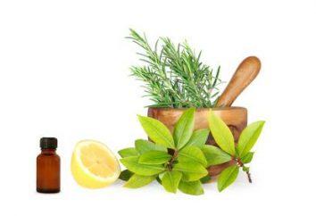 Właściwości antycellulitowe olejków eterycznych