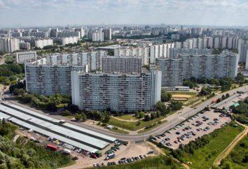 Realizzazione del programma di alloggi a prezzi accessibili in Russia