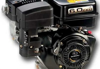 "Silnik motobloku ""Subaru"": charakterystyka, opinie"