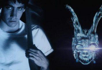 """La película """"Donnie Darko"""": opiniones, actores y roles, los comentarios del público"""