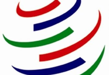 Le funzioni economiche del WTO