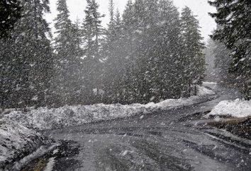 La neige de tempête est une sorte de précipitation
