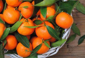 Vitamines en mandarin: liste des propriétés utiles, la valeur nutritive et les contre-indications