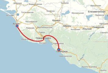"""Route """"Anapa, Gelendzhik"""": a distância entre cidades – como ir de um lugar para outro?"""