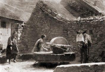 Mühle – von der Tiefe der Jahrhunderte bis zur Gegenwart
