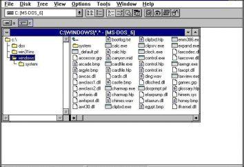 Menedżer plików: historia terminu i przegląd kilku menedżerów plików