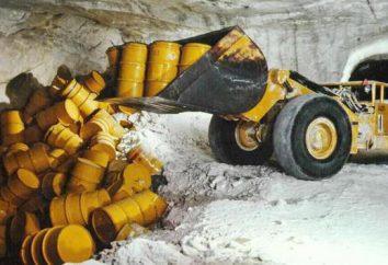materiale radioattivo: sostanze, le loro fonti e il rischio di