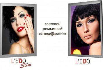 painéis de luz L'EDO – Dois novos modelos de freymlaytov publicidade no mercado russo