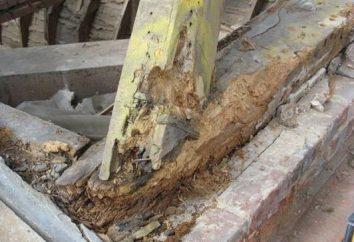 Skuteczna ochrona drewna przed wilgocią i gniciem