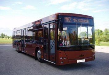 MAZ-203 – ein komfortables Multiman Stadtbus trehdvernyiy