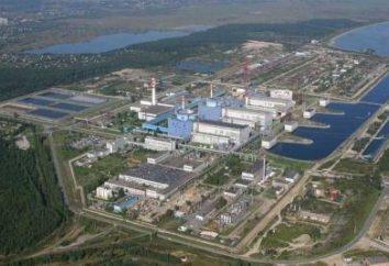 Khmelnytsky centrale nucleare – uno della galassia di stelle dell'energia nucleare in Ucraina